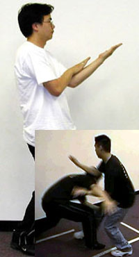 East-West Wing Chun - Approach